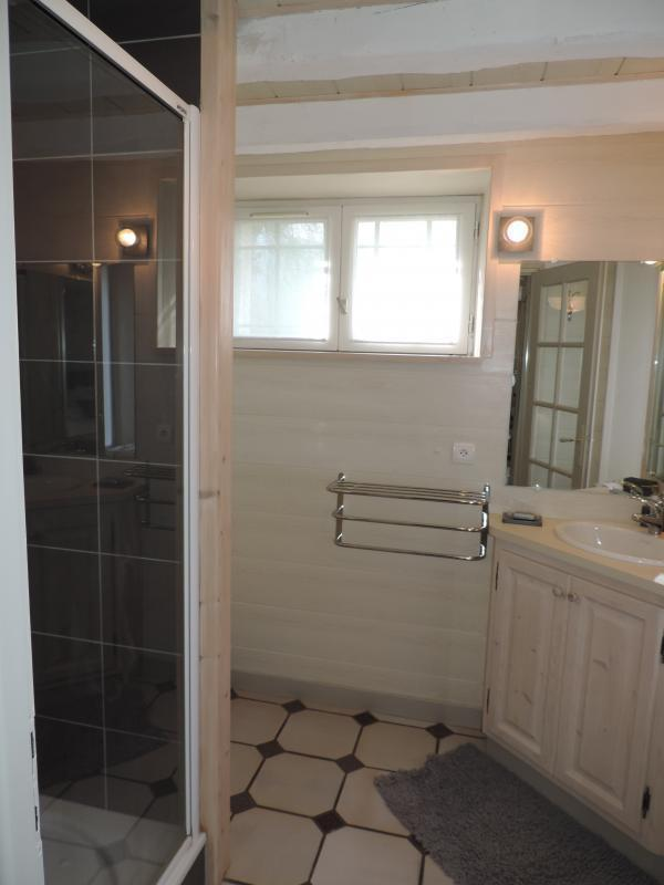 Chambre Bouquetin (salle de bains)